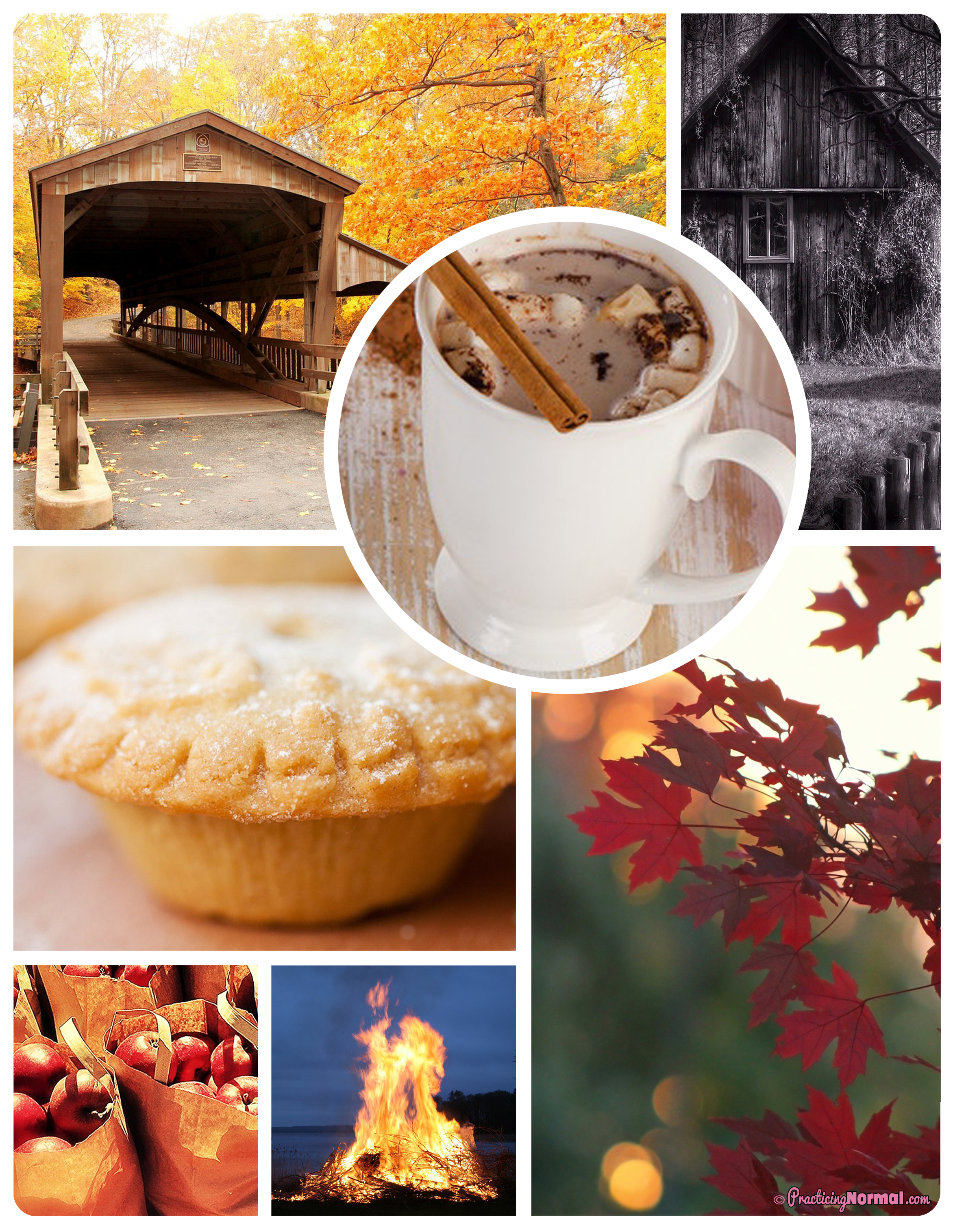 Hot Chocolate, road trip, haunted house, bake pies, autumn leaves, apples, bonfire, autumn, season, seasonal
