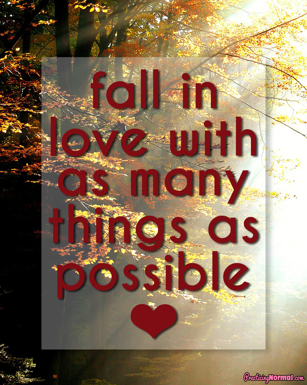 quote Fall in love with as many things as possible