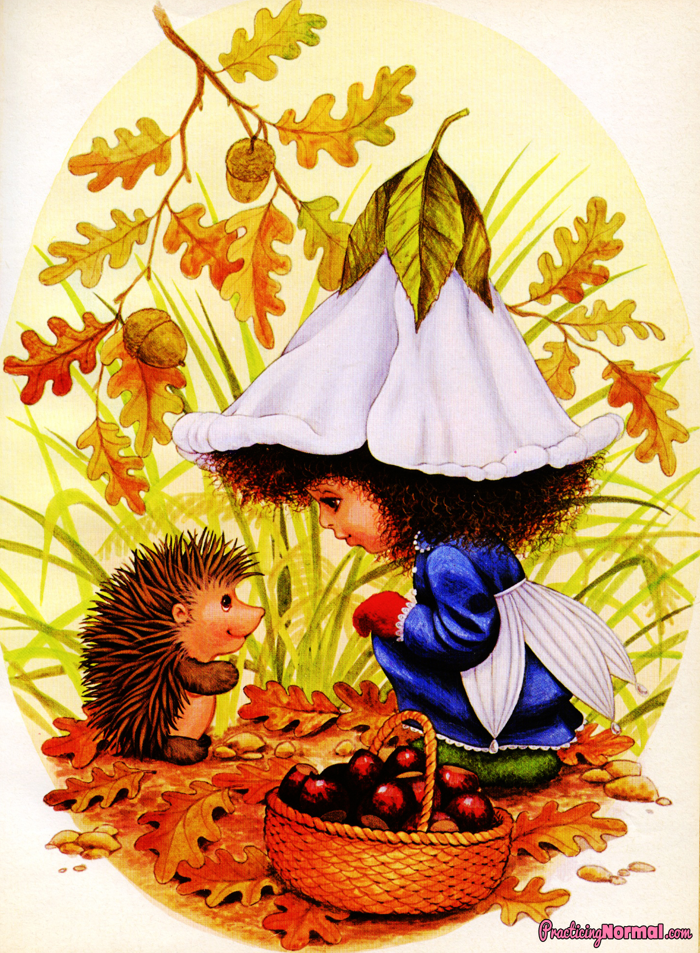 7 reasons why I love Autumn from Practicingnormal.com #children'sbook #reading #autumn