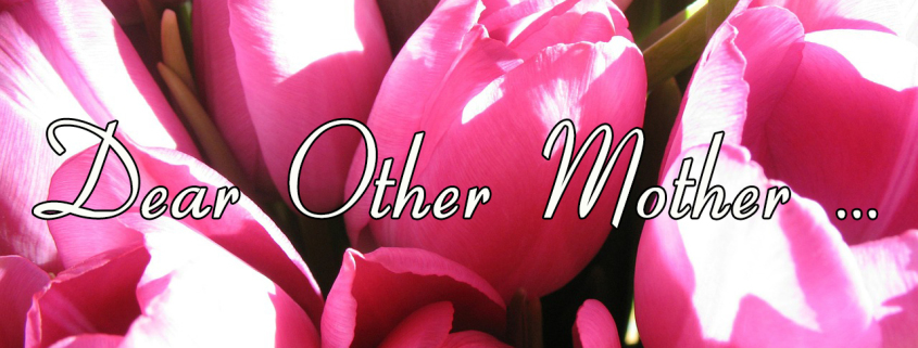 Dear Other Mother from Practicingnormal.com #stepmom #blendedfamily #othermom #family
