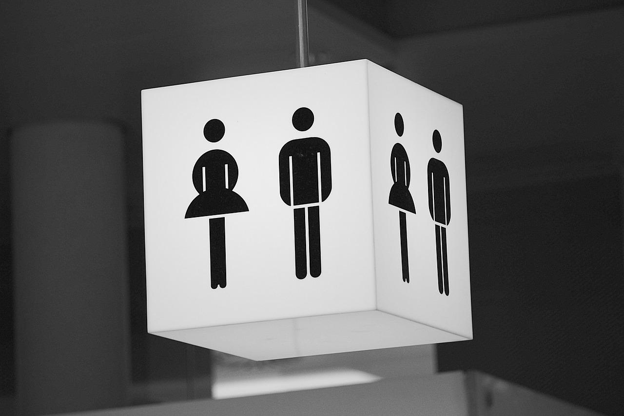 public toilet wc loo woman man