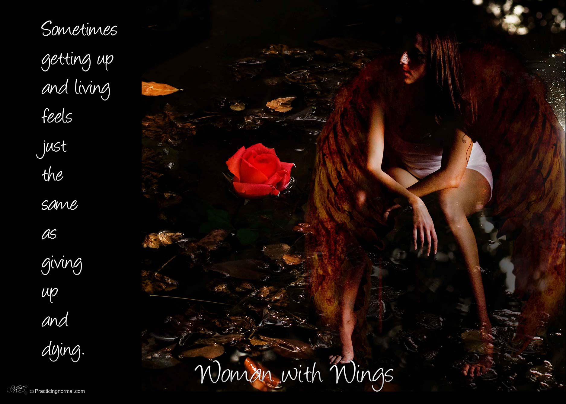 Woman with Wings, an artistic photo series dealing with the healing process after sexual trauma.  See more photos at Practicingnormal.com